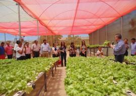 governo inaugura desalinizador em picui 4 270x191 - Zona rural de Picuí ganha unidade de cultivo hidropônico de hortaliças com água dessalinizada