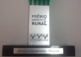 pesquisadora da emepa recebe premio do senar 11 270x191 - Pesquisadora da Emepa recebe Prêmio Mérito Rural do Senar
