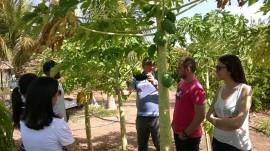 Pombal estudantes.6 270x151 - Estudantes da UFCG conhecem processo de produção de hortaliças e fruteiras em Pombal