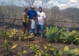 produção de hortaliças caraubasa 31 01 270x191 - Emater orienta família na construção de fossa séptica para reuso da água na irrigação de forragem