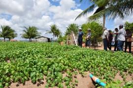 DSC 0062 7 02 270x179 - Extensionistas da Emater orientam agricultor familiar em plantio e criação de peixes
