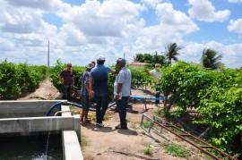 DSC 0073 07 02 270x179 - Extensionistas da Emater orientam agricultor familiar em plantio e criação de peixes