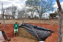 DSC 0332 26 09 2016 270x179 - Agricultores do Cariri usam feno na alimentação de galinhas de capoeira