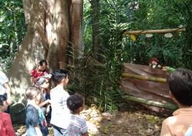 Jardim Botanico realiza atividades especiais neste sabado 3 270x191 - Jardim Botânico encerra atividades especiais de férias neste sábado