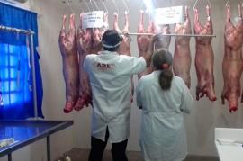 caprinos carne 270x179 - Pesquisa da Emepa conclui que ovinos alimentados com palma forrageira têm ganho de peso