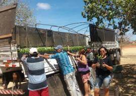 emater gov quer expandir as culturas do caju e maracuja na Paraiba 4 270x191 - Governo promove expansão de culturas do caju e maracujá na Paraíba