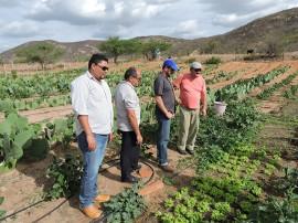 procase iica4 270x202 - Representante do IICA no Brasil visita comunidades rurais da Paraíba atendidas pelo Procase