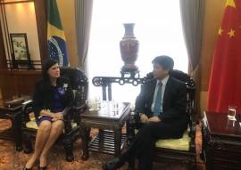 IMG 8409 270x191 - Vice-governadora discute parcerias com o embaixador da China no Brasil