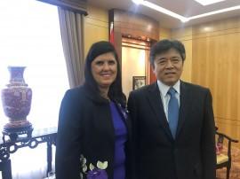 china 270x202 - Vice-governadora discute parcerias com o embaixador da China no Brasil