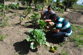 indiginas DSC 0373 270x179 - Governo mobiliza indígenas para conduzir projetos produtivos rurais