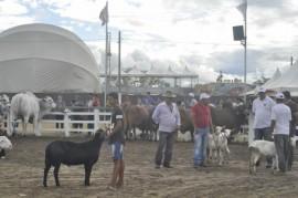 expap 270x179 - Durante encerramento: participantes destacam retomada da Expapi em Campina Grande