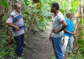 governo cadastra agricultores que produzem e comercializam organicos 3 270x191 - Governo cadastra agricultores que produzem e comercializam orgânicos para venda direta ao consumidor