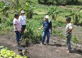 governo cadastra agricultores que produzem e comercializam organicos 4 270x191 - Governo cadastra agricultores que produzem e comercializam orgânicos para venda direta ao consumidor