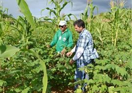 governo estimula debate sobre agroecologia no territorio da borborema 3 270x191 - Governo estimula debate sobre agroecologia no Território da Borborema