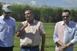 DSC0904 270x179 - Grupo Gestor do Plano ABC faz reunião de campo para conhecer cultura do reflorestamento