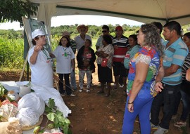 dia do campo cultivo de algodao 10 270x191 - Governo da Paraíba realiza o maior dia de campo de algodão agroecológico do Brasil