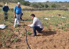 energia solar Picui 2 270x191 - Governo da Paraíba incentiva uso de energia solar na agricultura familiar
