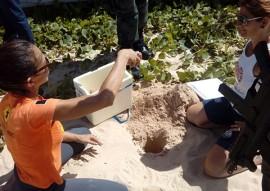 sec de turismo ninhos de tartaruga em jacarape 1 270x191 - Identificados ninhos de tartaruga no Parque Estadual das Trilhas