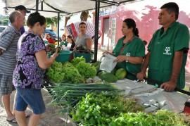 DSC 0013 270x179 - Agricultores de Catingueira recebem mudas de caju, raquetes de palma e alevinos