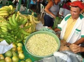 Feija verde 270x202 - Governo comemora o Dia do Agricultor com ações em todo o Estado