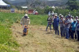 DSC0096 270x179 - Governo participa da implantação de ações do Plano ABC no dia de Campo em Alagoinha