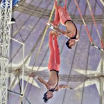 american circo (4)