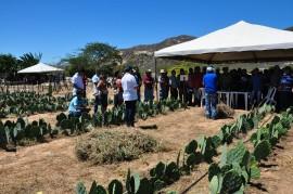 dia de campo 270x179 - Agricultores conhecem tecnologias em agroecologia e convivência com a estiagem em Dia de Campo