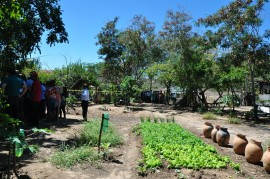 dia de campo2 270x179 - Agricultores conhecem tecnologias em agroecologia e convivência com a estiagem em Dia de Campo