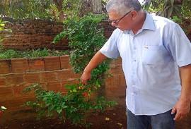 emater de alagoa grande demonstra forca da agricultura familiar 6 270x183 - Emater de Alagoa Grande demonstra força da agricultura familiar no Caminhos do Frio