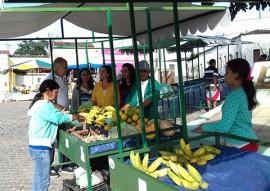 emater feira do produtor rural 1 270x191 - Emater instala 61 feiras do produtor rural e duas cidades preparam suas unidades