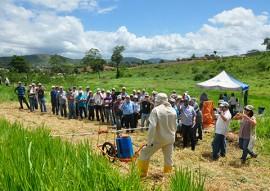 emepa emater tecnologia para agricultores para emissao de baixo carbono 6 270x191 - Emepa e Emater levam aos agricultores tecnologia para contribuir na emissão de baixo carbono