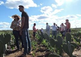fundo internacional de desenvolvimento da agricultura visita procase 1 270x191 - Técnicos do Fundo Internacional de Desenvolvimento Agrícola visitam as ações do Procase