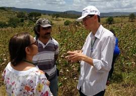 workshop de cultivo do algodao colorido 4 270x191 - Governo e Norfil S/A impulsionam cultivo do algodão orgânico e promovem workshop para estimular agricultor