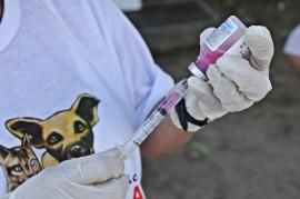 Raiva animal FOTO Ricardo Puppe6 270x179 - Dia D de vacinação contra a raiva animal acontece neste sábado em toda a Paraíba