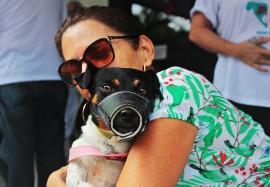 RicardoPuppe Dia D Vacina Raiva 1 270x187 - Cachorros e gatos são vacinados contra a raiva animal em toda a Paraíba