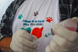 RicardoPuppe Dia D Vacina Raiva 4 270x180 - Cachorros e gatos são vacinados contra a raiva animal em toda a Paraíba