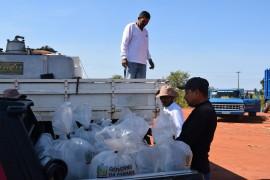alevinos2 sape 270x180 - Prefeitura de Sapé e Emater distribuem alevinos com agricultores
