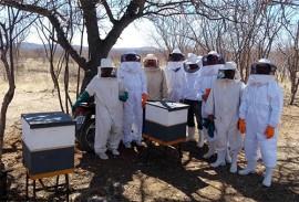 emepa e emater implantam apiarios no ecoprodutivo 3 270x183 - Emepa e Emater implantam apiários no Ecoprodutivo em três municípios