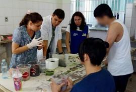 socioeducando aprendem a cultivar plantas em pequenos depositos 1 270x183 - Socioeducandos aprendem a cultivar plantas em pequenos terrários