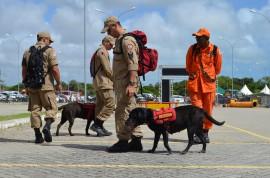 DSC 2944 270x178 - Corpo de Bombeiros da PB tem dois cães para atuação em ocorrências de buscas em território nacional