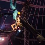 Disney Circo-Foto de Renata Pires - Danilo Vidal