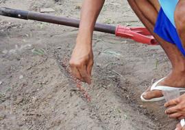 fundac professores da escola integral cidada ensinam o cultivo de horta organica 2 270x191 - Escola cidadã integral ensina cultivo de horta orgânica e tenta mudar hábitos em unidades socioeducativas