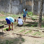 fundac professores da escola integral cidada ensinam o cultivo de horta organica (3)