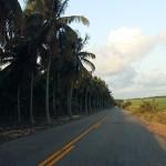der investimentos na sinalizacao das estradas do estado (5)