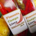 feira de agricultura familiar na saude foto RicardoPuppe (5)