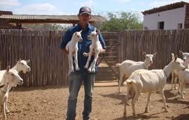 foto projeto sudene 2 270x172 - Pequenos produtores de nove municípios são contemplados com genética caprina da Emepa