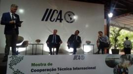 mostra do IICA  (4)