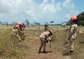 19.01.18 bombeiros 2 1 270x190 - Bombeiros realizam capacitação em combate a incêndios florestais