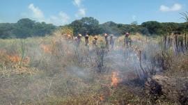 19.01.18 bombeiros 3 1 270x151 - Bombeiros realizam capacitação em combate a incêndios florestais