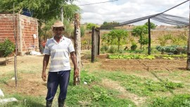 malta-hortaliça agroecologica (2)
